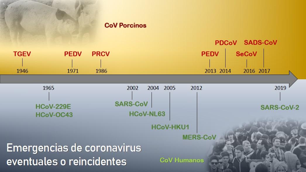 Modificado por AsBioMad: Fuente Dra. Sonia Zuñiga (CNB)